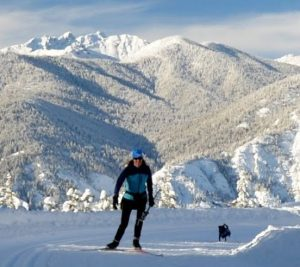 cross-country skiing with dog in the Methow Valley